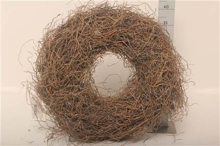 Grossiste Wr Couronne Root Transparante 38 Cm  : Wr Couronne Root Transparante 38 Cm  avec tarifs grossiste